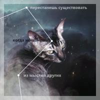 https://forumupload.ru/uploads/001a/ae/99/76/918934.png