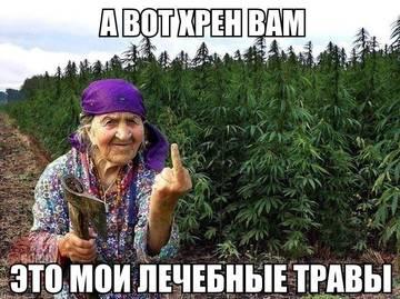 http://forumupload.ru/uploads/001a/b8/7e/10/t161034.jpg