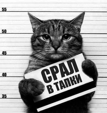 http://forumupload.ru/uploads/001a/b8/7e/10/t246871.jpg