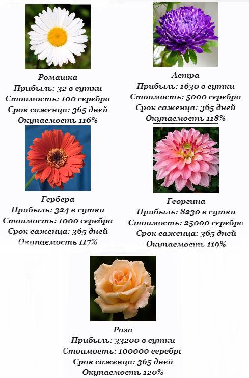 http://forumupload.ru/uploads/001a/b8/7e/4/553988.png