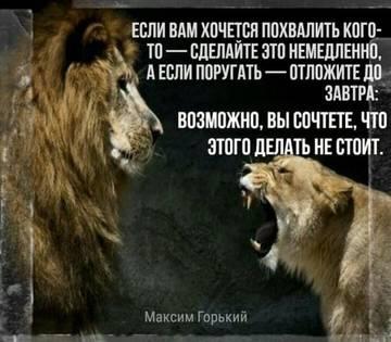 http://forumupload.ru/uploads/001a/b8/7e/6/t842667.jpg