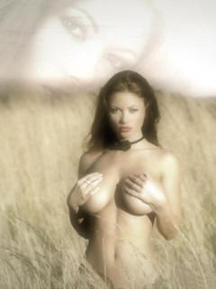 http://forumupload.ru/uploads/001a/d3/13/2/335012.jpg