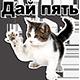 http://forumupload.ru/uploads/001a/d5/10/2/233379.png