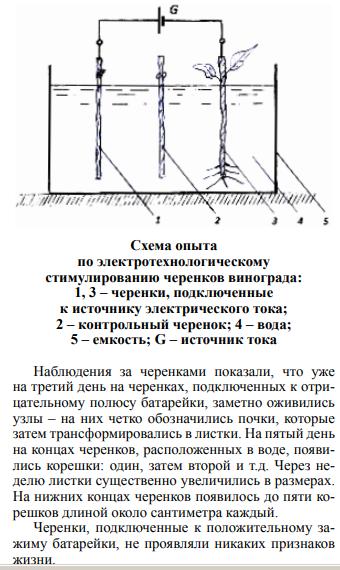 https://forumupload.ru/uploads/001a/d9/f2/66/t137522.png