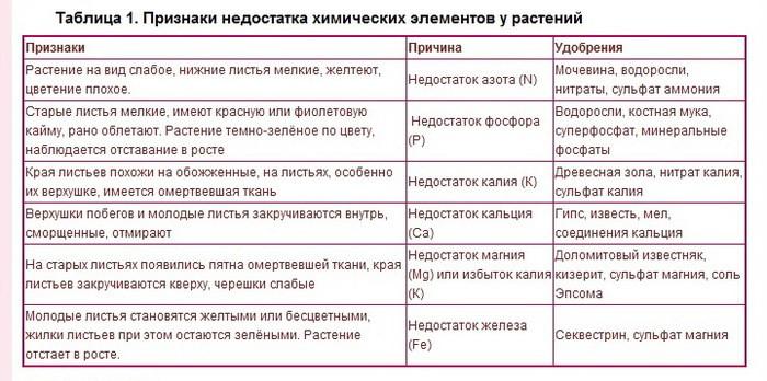 https://forumupload.ru/uploads/001a/e1/f2/2/901113.jpg