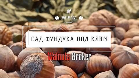 https://forumupload.ru/uploads/001a/ea/4a/2/t560488.jpg
