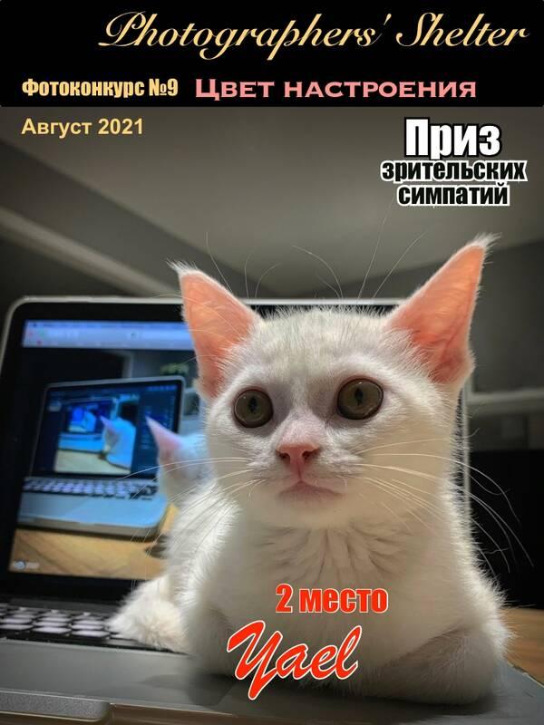 https://forumupload.ru/uploads/001a/ed/9e/2/t298059.jpg