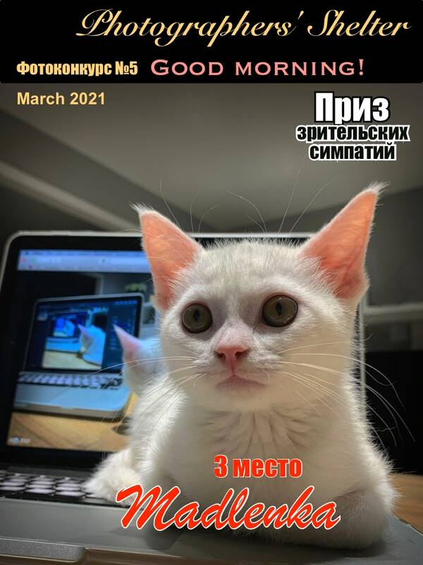 https://forumupload.ru/uploads/001a/ed/9e/2/t582198.jpg