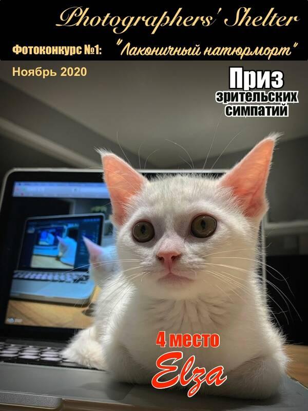 https://forumupload.ru/uploads/001a/ed/9e/2/t751642.jpg