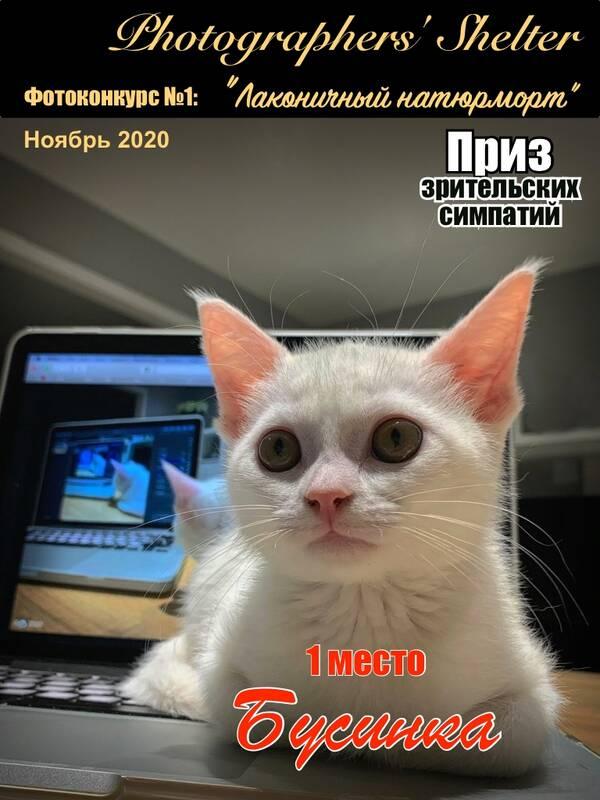 https://forumupload.ru/uploads/001a/ed/9e/2/t924270.jpg