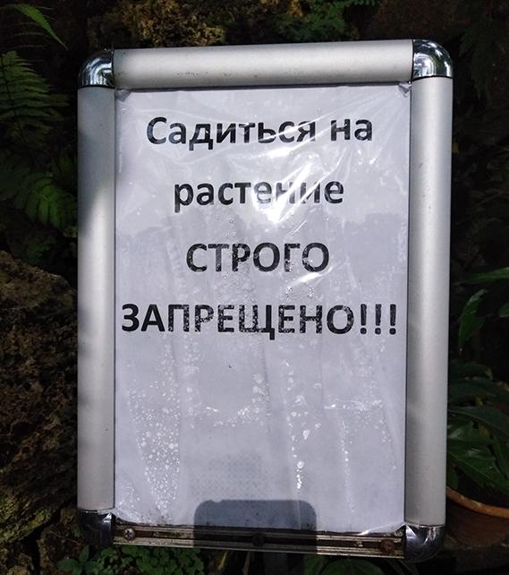 https://forumupload.ru/uploads/001a/ed/9e/6/t906595.jpg