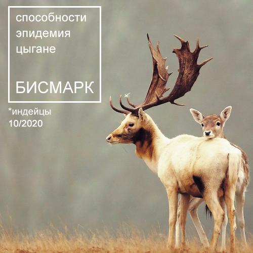 https://forumupload.ru/uploads/001a/f4/de/2/256503.png