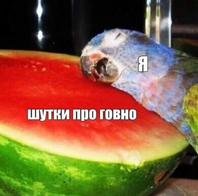 http://forumupload.ru/uploads/001b/2e/0d/16/965968.jpg